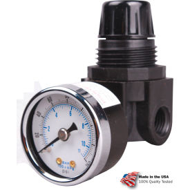 "R262G Arrow Mini Air Regulator R262g, Glass Filled Nylon, 1/4"" Npt, 250 Psi"