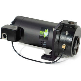 eco flo efcwj10 deep well convertible jet pump - 1-1/4 in. fnpt inlet- 1 hp - 115/230v - 14.8 gpm Eco Flo EFCWJ10 Deep Well Convertible Jet Pump - 1-1/4 In. FNPT Inlet- 1 HP - 115/230V - 14.8 GPM