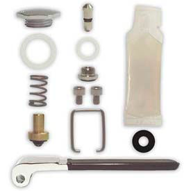 Fisher 11355, Spray Valve Repair Kit, Polished Chrome